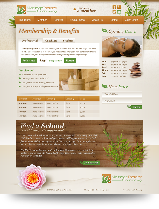 Massage Therapy Association