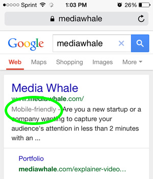 Mobile Friendly Results in Google