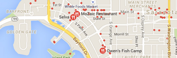 Google Local Proximity Search